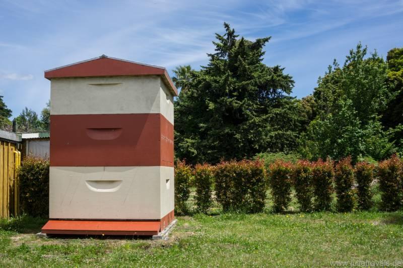 Kerkeri Bee Hive