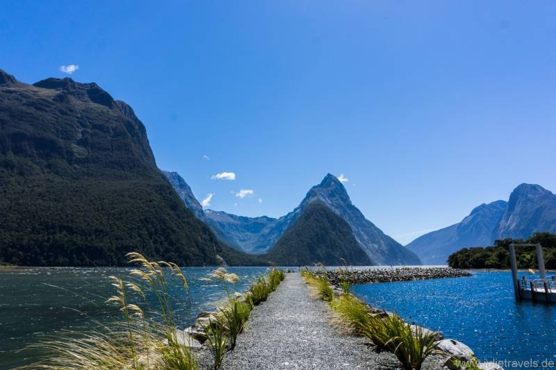 Milford Sound Steg
