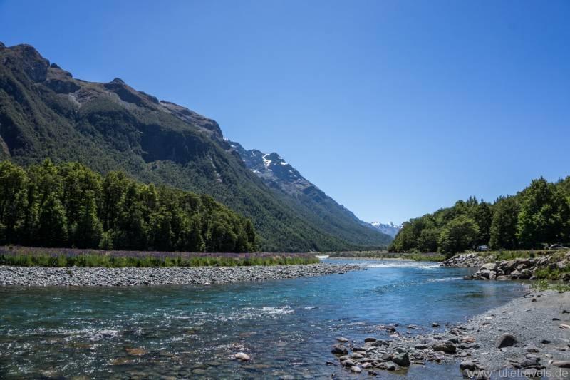 Ein natürliches Flussbett