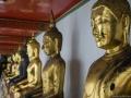 Buddha Sammlung