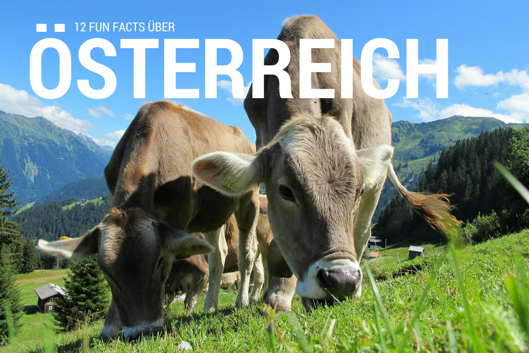 12 Fun Facts Uber Osterreich Julie Travels